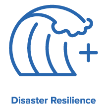 Global Grand Challenge Disaster Resilience
