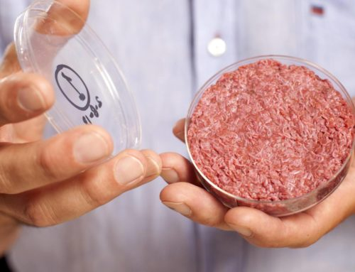 Cultured meat on the menu soon? (DUTCH article)